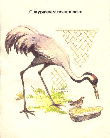 Книжка где обедал воробей своими руками